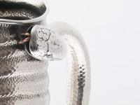 pichet-serpentd3